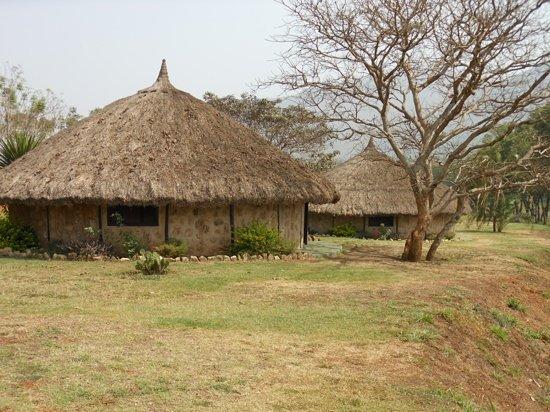 Foumban, Kamerun: un havre de paix au fin fond de nulle part