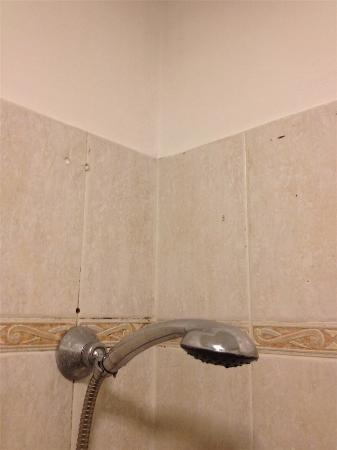 Hotel Positano: Filthy Shower