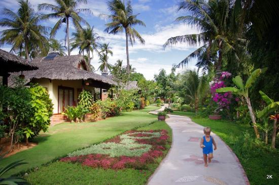 Bao Quynh Bungalow: Bao Quynh: Heading towards the sea