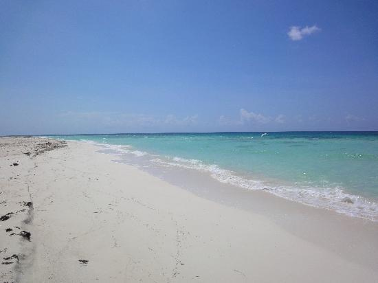 Playa Paraiso: paraiso beach