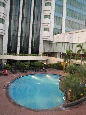 Pan Pacific Manila : pool