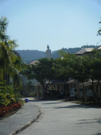 Mandarina Villa: view from the front door