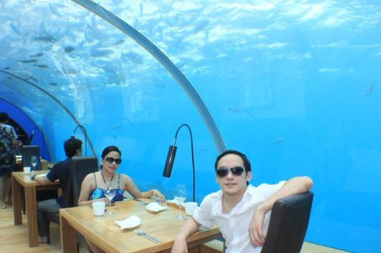 Ithaa sunnies picture of ithaa undersea restaurant for Ithaa prices