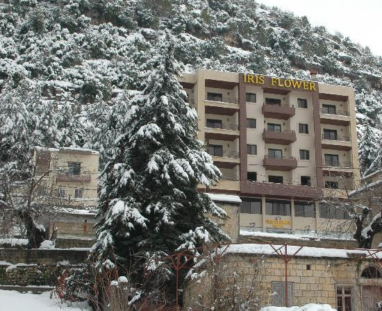 Snow In Jezzine Picture Of Iris Flower Hotel Jezzine Tripadvisor