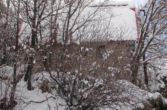 Iris Flower Hotel: Snow in Jezzine