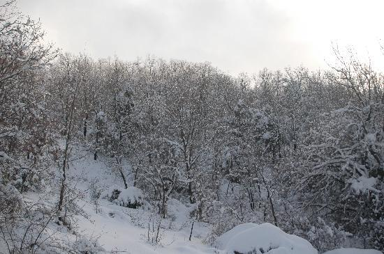 Iris Flower Hotel: Snow in Jezzine
