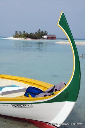 Guesthouse Palma: maldives
