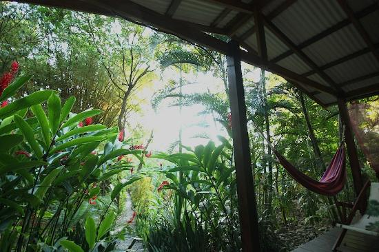 Hotel bungalows SolyLuna los Almendros.: View from breakfast