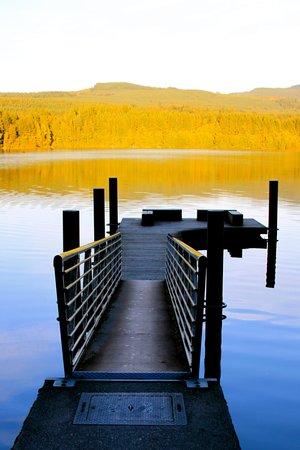 Lake Padden Park