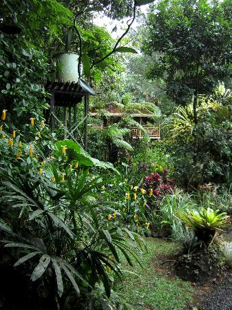 Casa Rio Blanco : le magnifique jardin