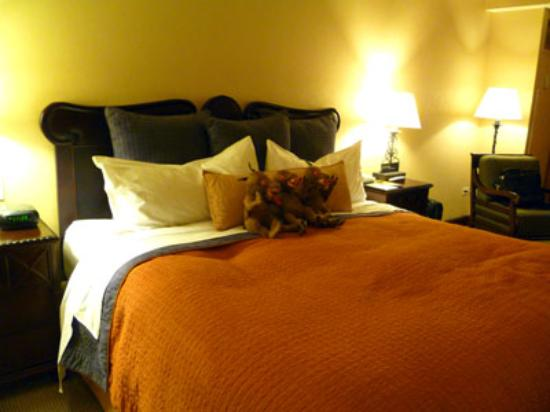 Real InterContinental Guatemala: The large comfortable beds have an assortment of plush pillows