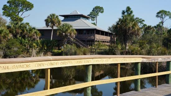 Alligator Creek Preserve: Alligator Creek