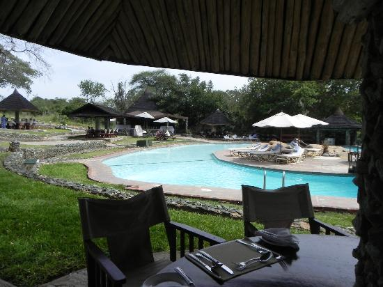 Tarangire Sopa Lodge: By the pool at lunchtime
