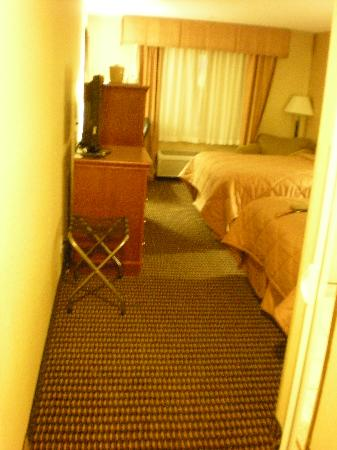 Comfort Inn & Suites: Looking into room 215