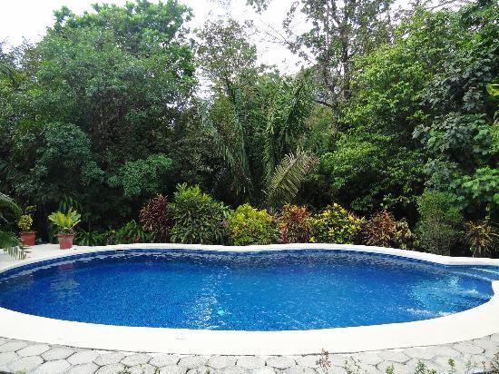 Hotel Belvedere - Playa Samara: Pool bei Haus 2