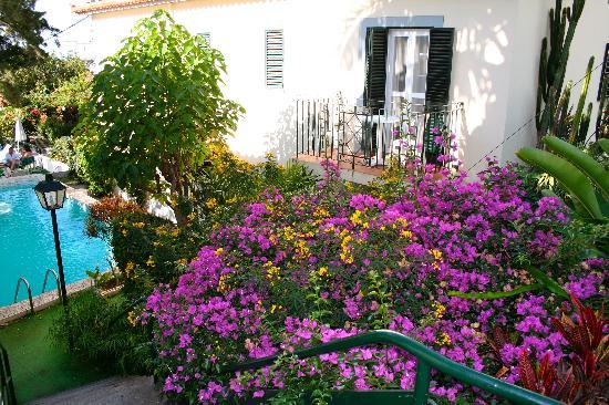 فيلا فيسينسيا: Beautiful flowers in the well-kept secluded garden.