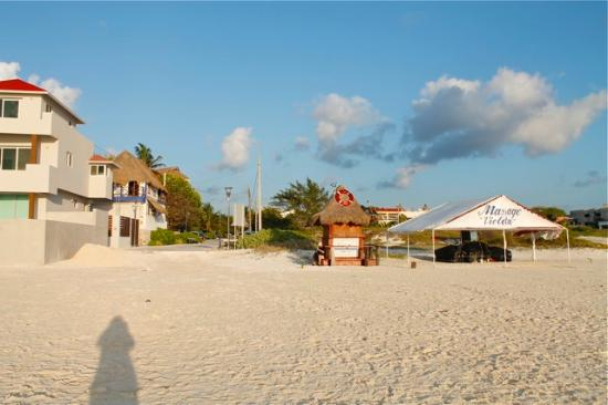 Amar Inn B&B: From the beach, new construction to the left and fabulous Violeta's to the right