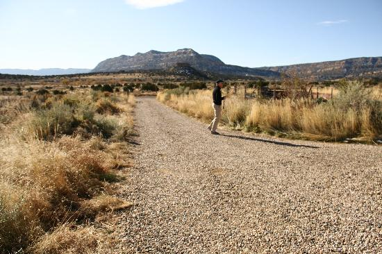 La Luz Desert Retreat: road leaving the house