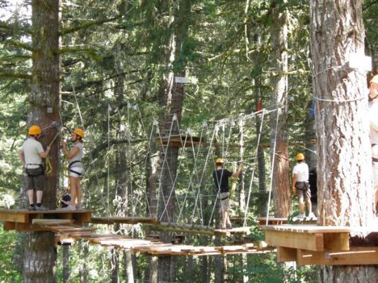 Tree to Tree Adventure Park : Fun for everyone