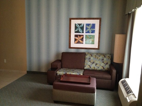 Homewood Suites Atlanta NW-Kennesaw Town Ctr : sofa