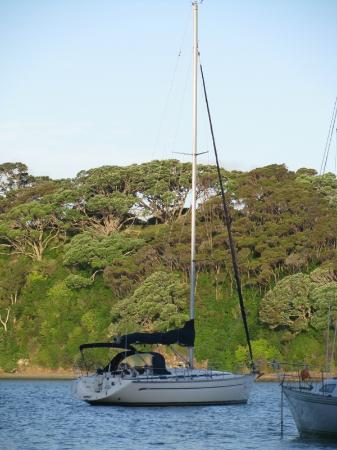 Mill Bay Haven: Tony's sail boat, the Hinemoana II