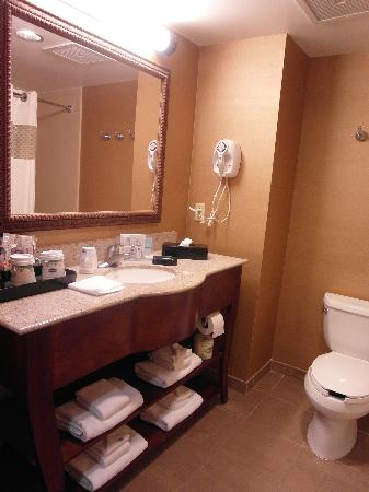 Hampton Inn & Suites Norfolk-Airport: Decent one night stay