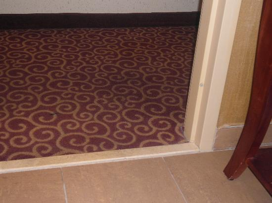 Hampton Inn & Suites Norfolk-Airport: Worn rug and wallpaper rolling in the bathroom