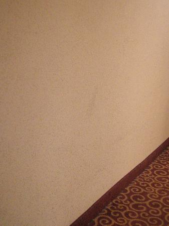 Hampton Inn & Suites Norfolk-Airport: Scuffed up walls