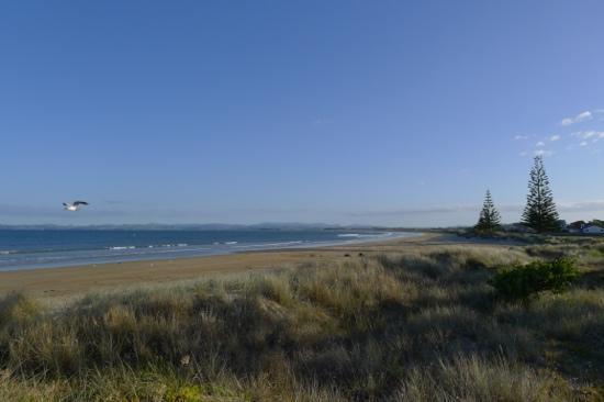 Tokerau Beach Motor Camp : Tokerau beach