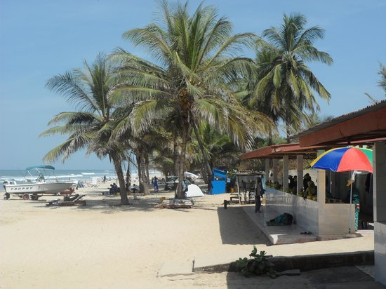 The 7 Best Things to Do in Kotu, Gambia