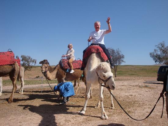 Касабланка, Марокко: Abdul - camel ride