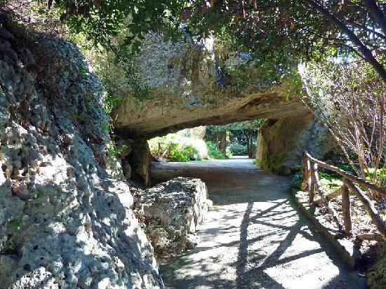 Latomia del Paradiso: Gang unter den Kalksteinfelsen