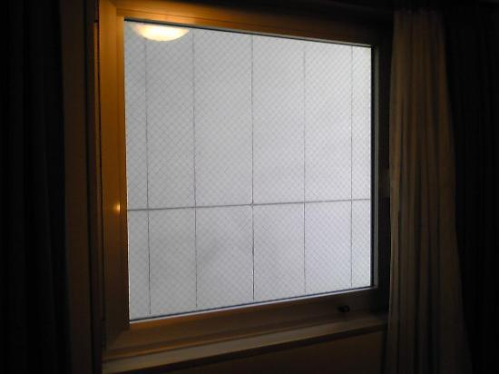 Ark Hotel Tokyo Ikebukuro : 窓から見えるは壁のみ
