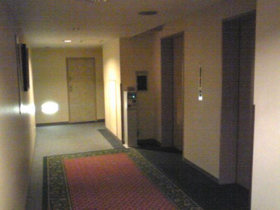 Ark Hotel Tokyo Ikebukuro : 客室エレベータ前