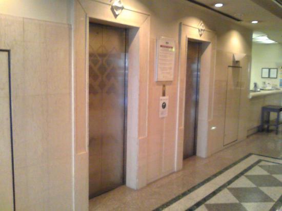 Ark Hotel Tokyo Ikebukuro : ロビー・エレベータ前