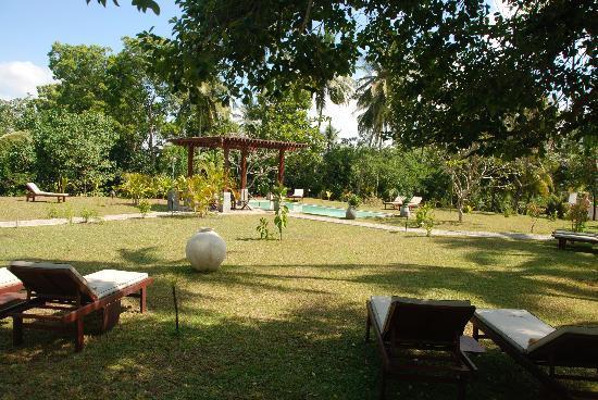 Buckingham Place: jardin et piscine