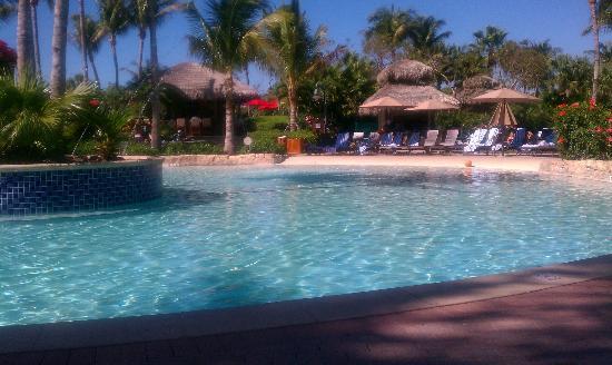 Hyatt Residence Club Bonita Springs, Coconut Plantation: Pool