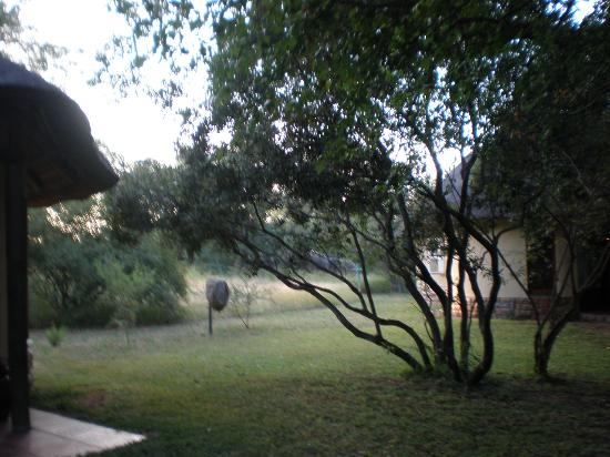 写真N'kaya Lodge枚