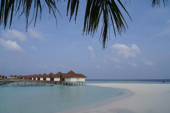 Robinson Club Maldives: lagoon villas