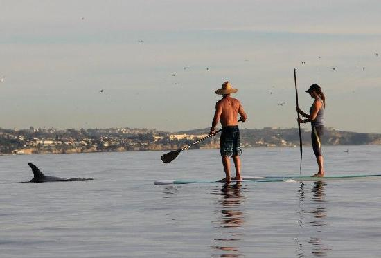 Paddle Board Bliss Laguna Beach 2018 All You Need To Know Before Go With Photos Tripadvisor