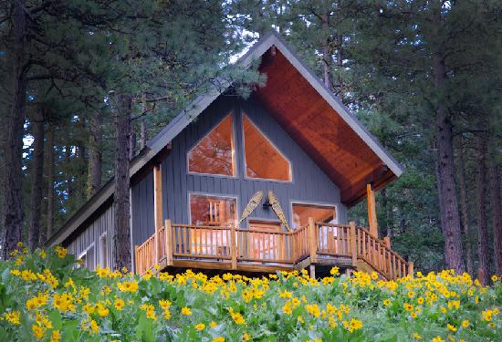 Mountain Home Lodge: Cabin Ponder Rock with Balsam Root Wildflowers