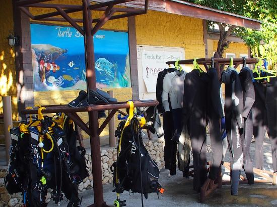 Turtle Bay Dive Resort: Centro de buceo