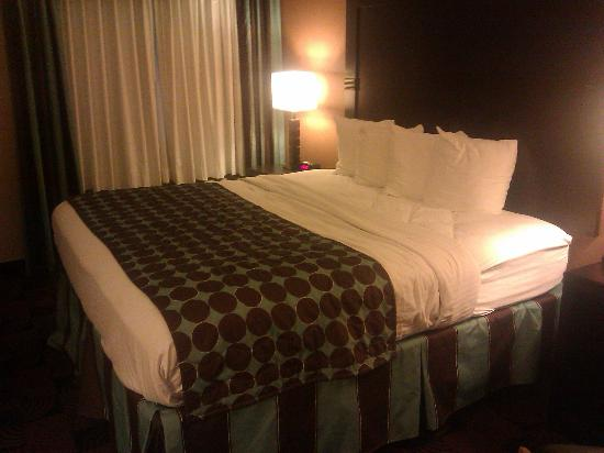 Best Western Saraland Hotel & Suites : king size bed