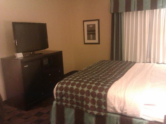 BEST WESTERN Motorsports Inn & Suites: nice large TV