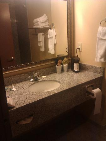 BEST WESTERN Motorsports Inn & Suites: bath....