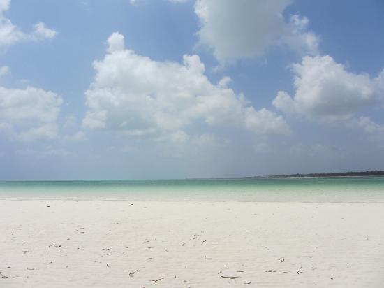 Mamamapambo Boutique Hotel: atollo naturale di fronte all'hotel