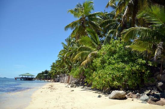 Coco De Mer Hotel And Black Parrot: Beach near superior rooms