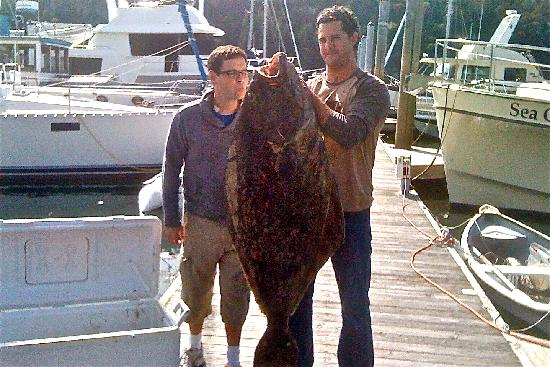 Orcas island charter fishing giant halibut picture of for Fishing charters washington state
