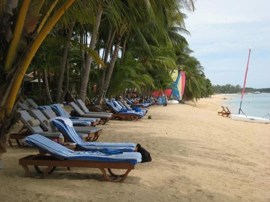 Santiburi Koh Samui : la plage