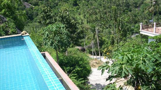 Ban Sua Samui: Der Ausblick vom Pool , was will man mehr
